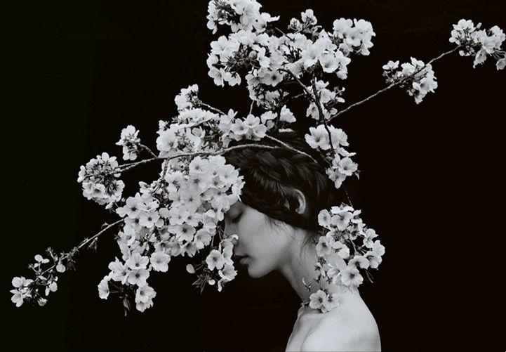 Sayaka Maruyama (Pinterest)